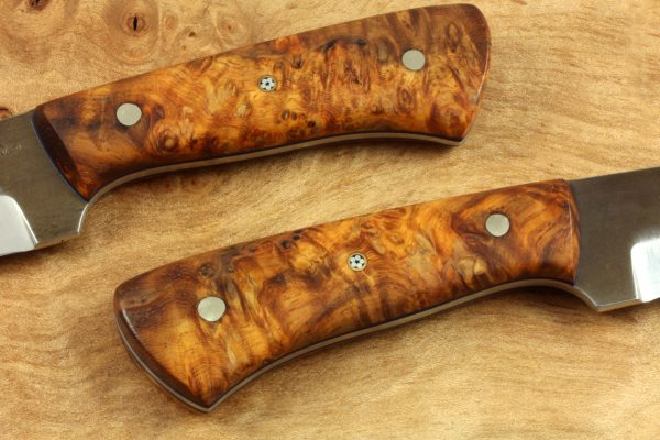 151mm Pipsqueek Neck Knife, Forge Finish, Stabilized Burl, 60grams